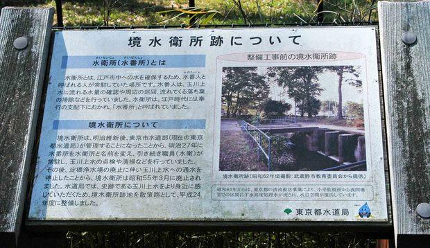 玉川上水方面ジョギングコース_17.jpg