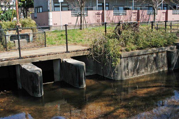 玉川上水方面ジョギングコース_18.jpg