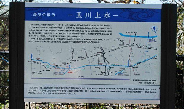 玉川上水方面ジョギングコース_20.jpg