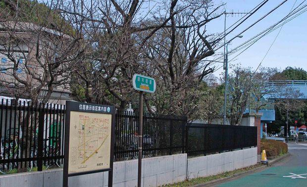 玉川上水方面ジョギングコース_25.jpg