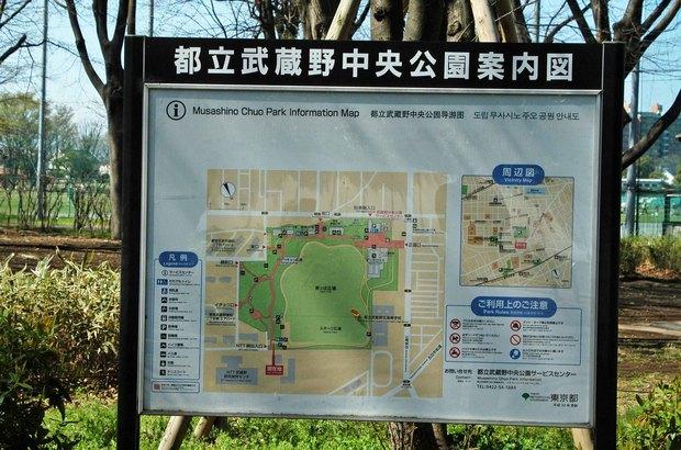 玉川上水方面ジョギングコース_4.jpg