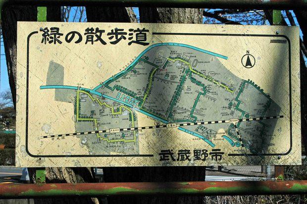 玉川上水方面ジョギングコース_7.jpg