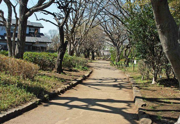 玉川上水方面ジョギングコース_8.jpg